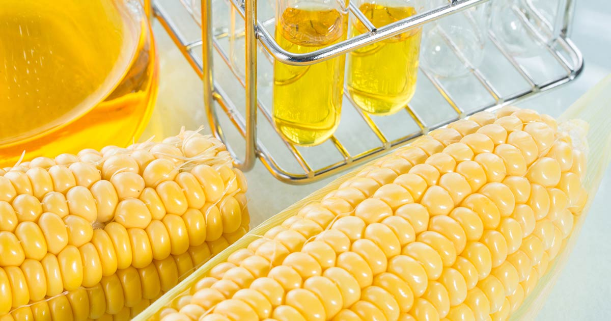 High Fructose Corn Syrup In Food Industry